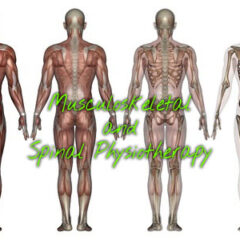 Musculoskeletal & Spinal Physiotherapy